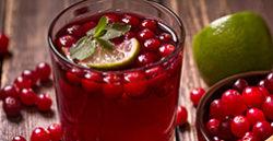 Fresh cranberry drink Буча