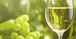 Белое вино Буча